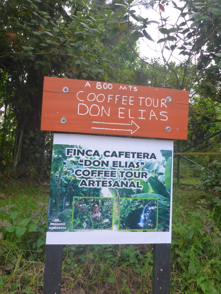 Don Elias organic coffee farm